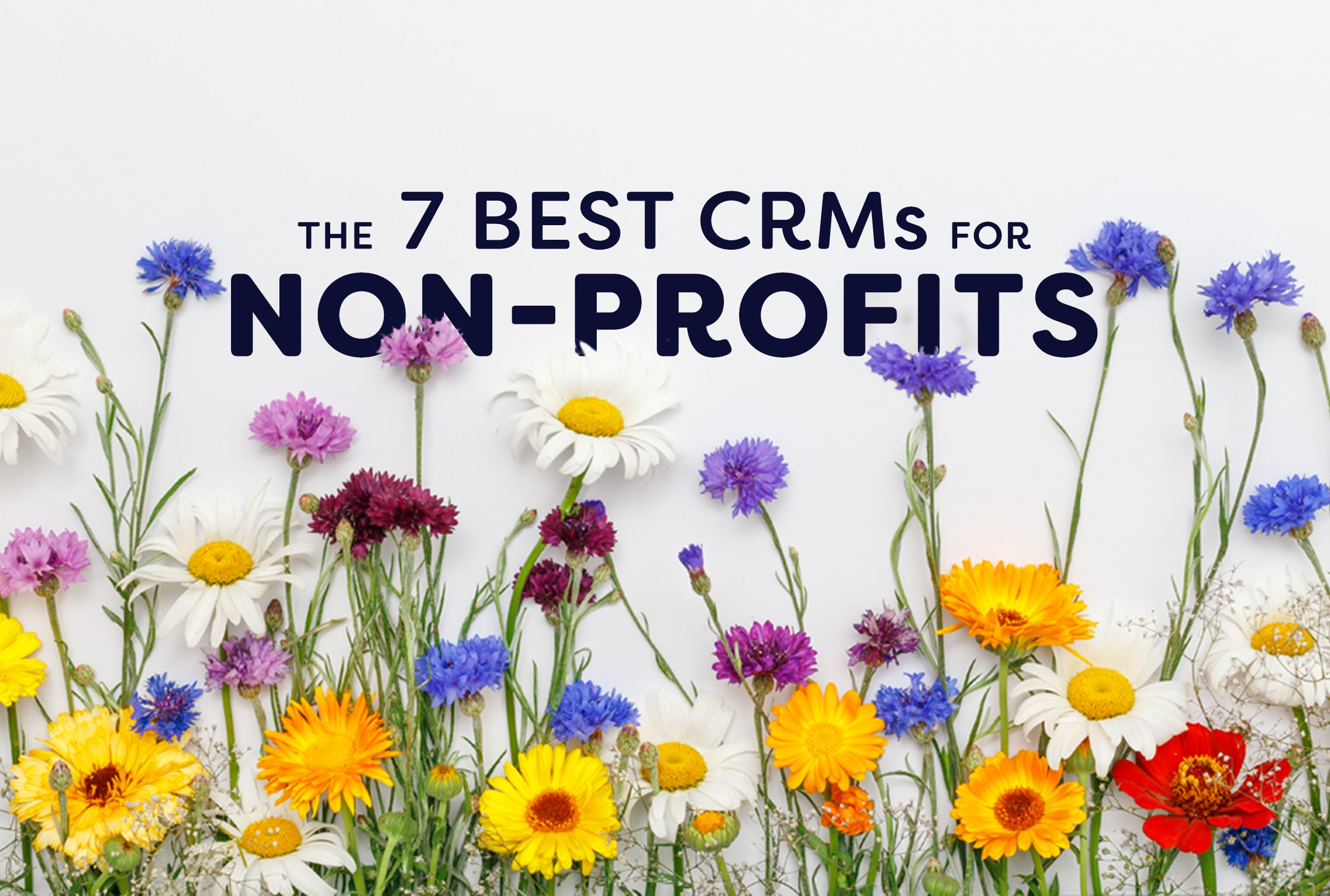 best crms for nonprofits non-profit crm