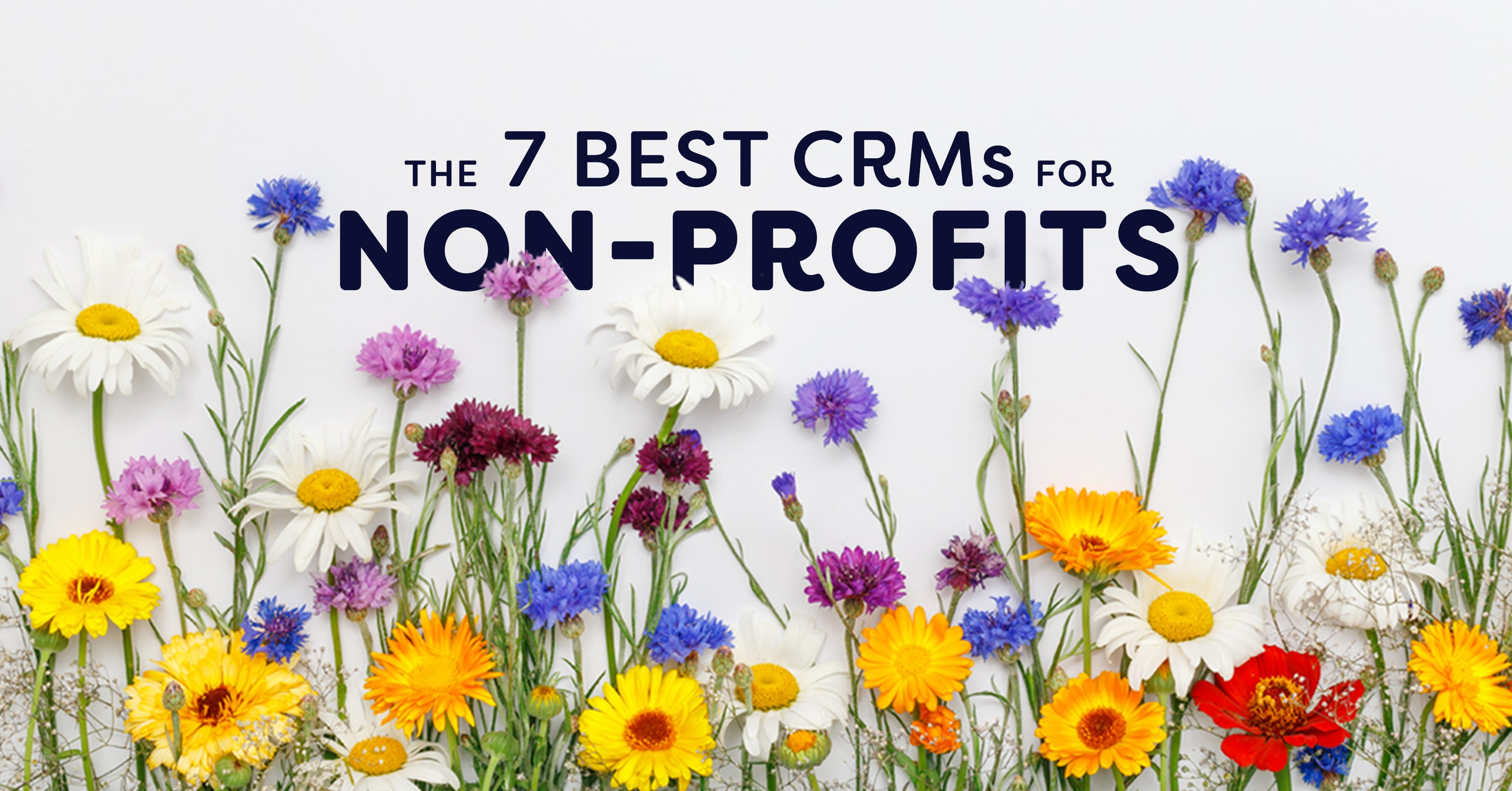 Comparing the 7 Best CRMs for Non-Profits | Nutshell